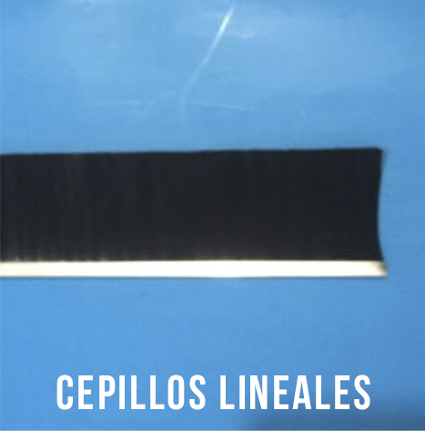 img_lineales